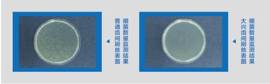 99.9抗菌刷丝清洁刷医用刷